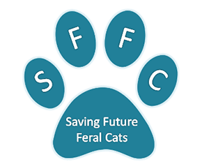Saving Future Feral Cats