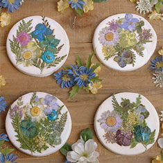 How to make flower coasters with baking soda.