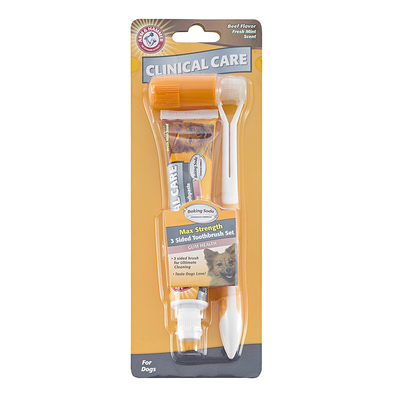 Clinical Care Three‐Sided Toothbrush & Toothpaste Set in Beef Flavor
