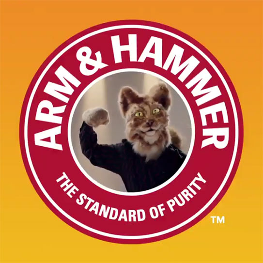 Arm and Hammer cat litter video